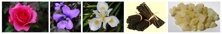 Fleur d'Iris notes
